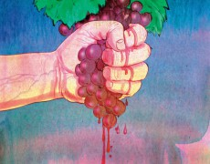 Natural Wines are Here to Stay