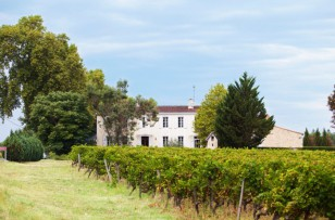 Why Côtes de Bordeaux Should be Your Go-To French Wine