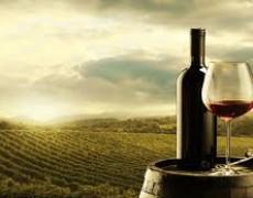 Tất tần tật về rượu vang Pháp