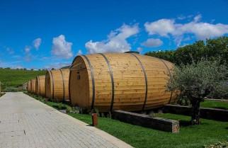 Thức giấc trong thùng rượu khổng lồ ở giữa vườn nho