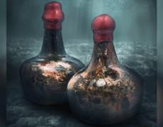 Đấu giá rượu vang 400 năm tuổi được tìm thấy trong một vụ đắm tàu