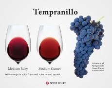 Hướng dẫn về Rượu vang Tempranillo