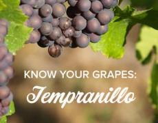 Tempranillo - Át chủ bài của rượu vang Tây Ban Nha