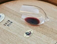 5 lý do tại sao Cabernet Sauvignon yêu thích gỗ sồi Pháp