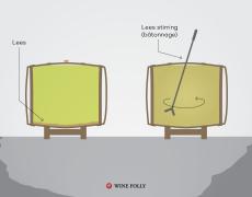 Rượu Lees là gì?